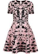 Botanical Jacquard Knit Dress