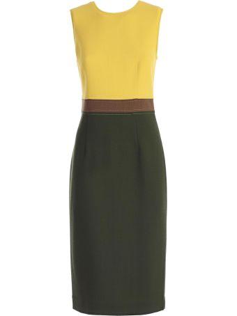 P.a.r.o.s.h. Fitted Waist Dress