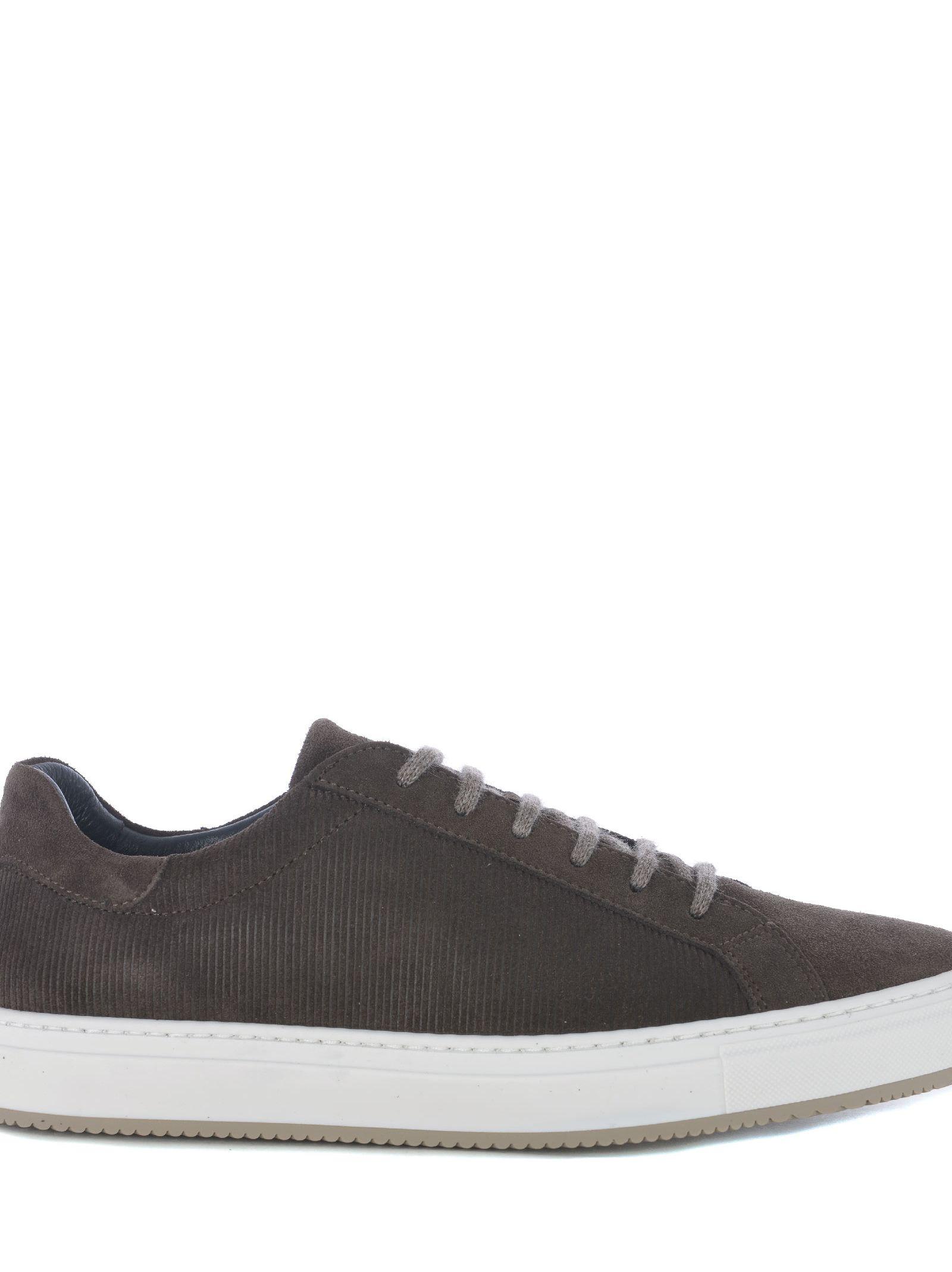 ANDREA ZORI Lace-Up Sneakers in Testa Di Moro
