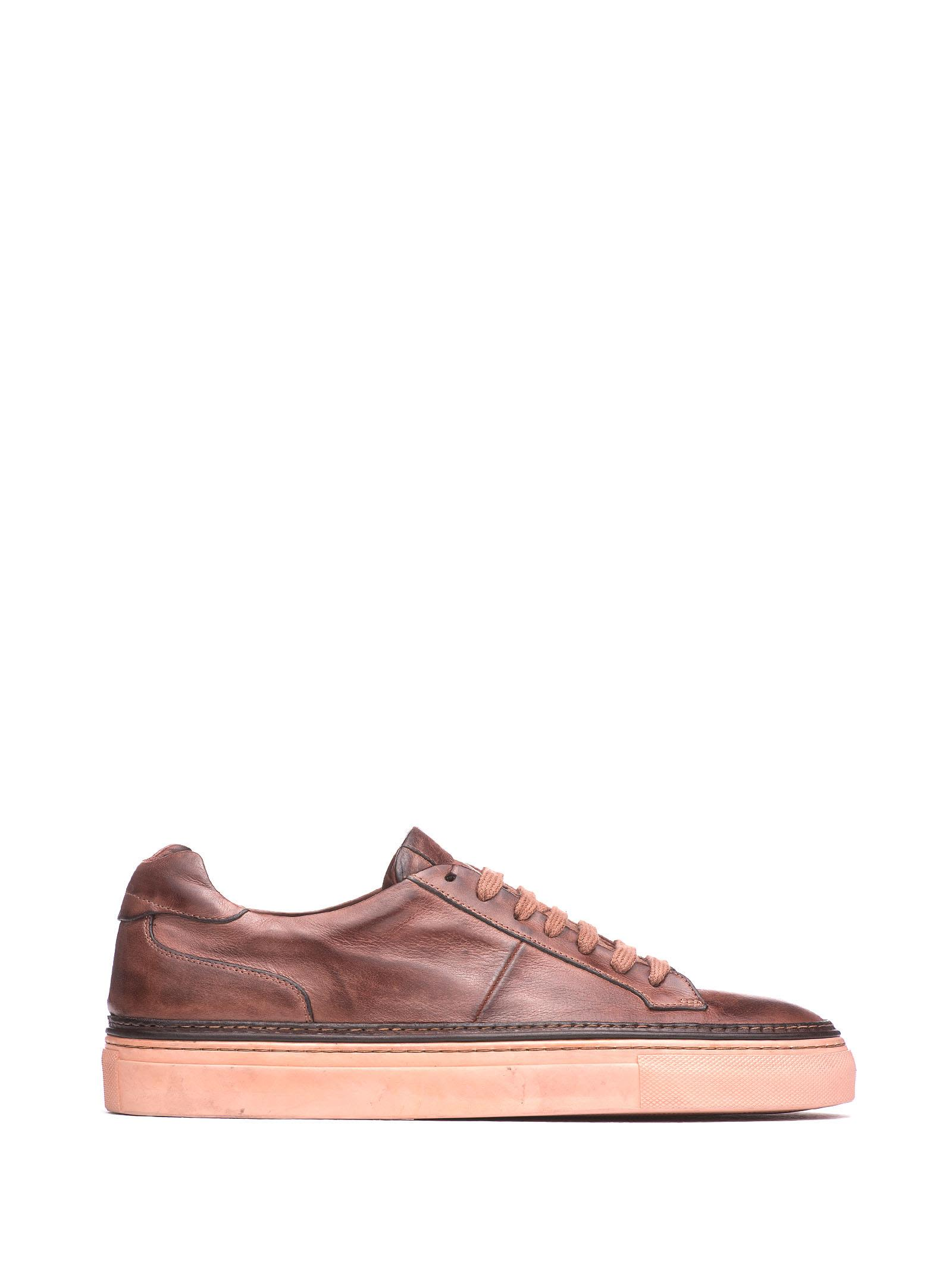 CORVARI Brown Leather Sneakers in Marrone
