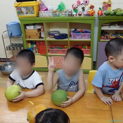 Trường mầm non Vietkids - Láng Hạ