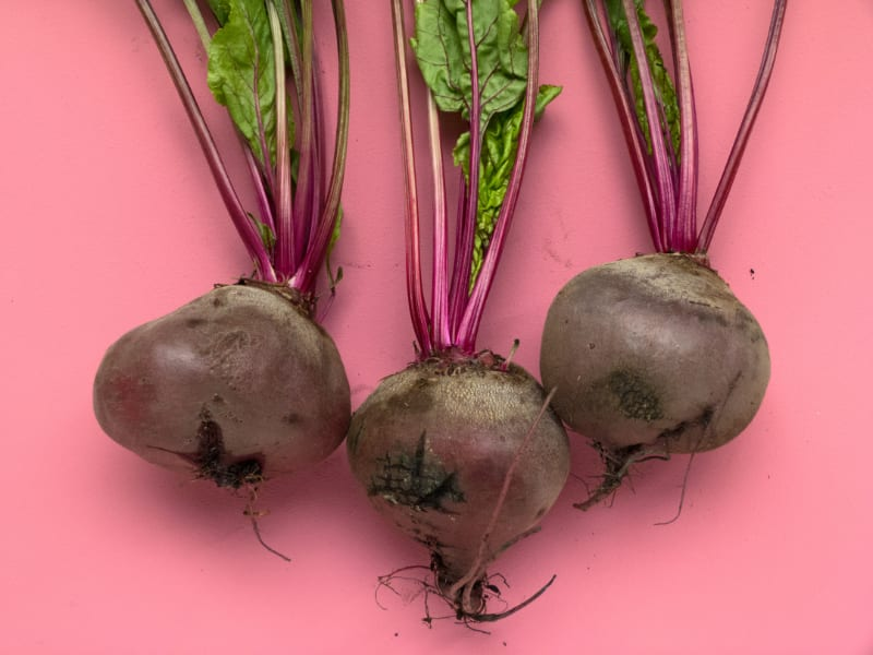 Is Urine Discoloration by Beets Abnormal or Normal?