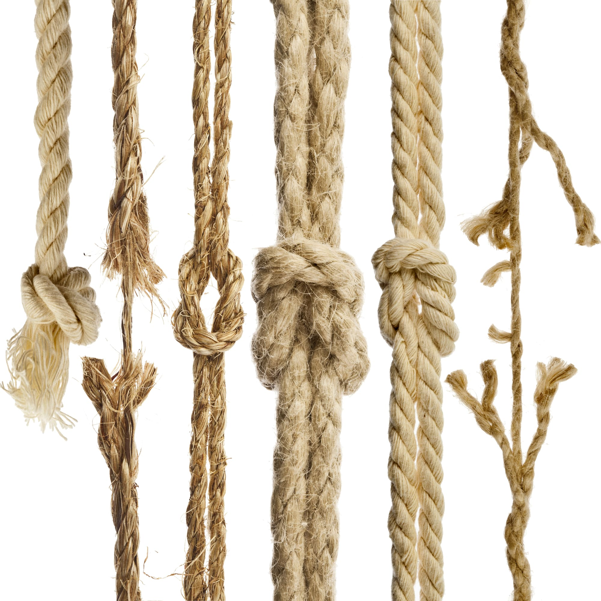 What is the Best Kind of Rope for Your Cat Scratching Post?
