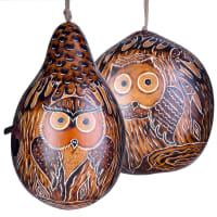 Pair of Forest owl birdhouses