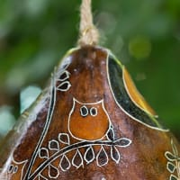 CGH209M Owl in the Woods Birdhouse