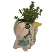Bird Pio - Swirly Pot