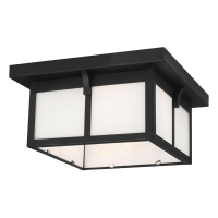 Tomek Two Light Outdoor Flush Mount Black Bulbs Inc