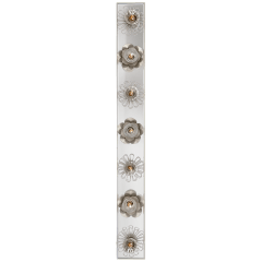"""Keaton 36"""" Floral Vanity Light in Burnished Silver Leaf and Mirror"""