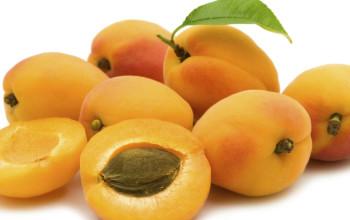 Apricot Coconut Filling