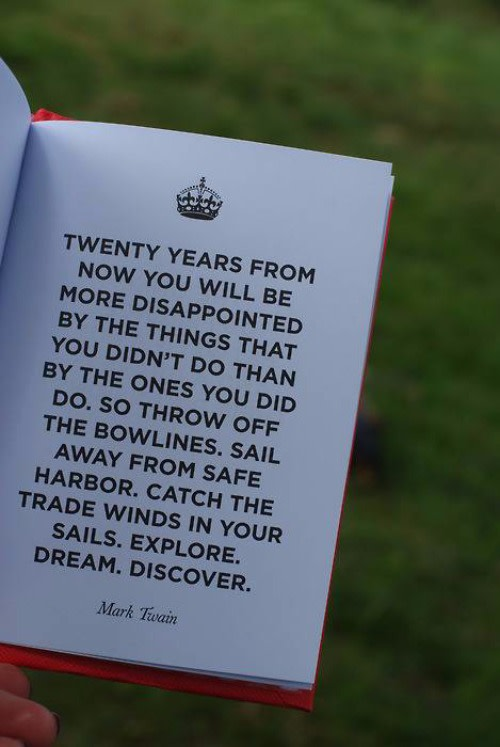 """Twenty years from now you will be more disappointed by the things that.."""