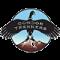 Condor Trekkers logo
