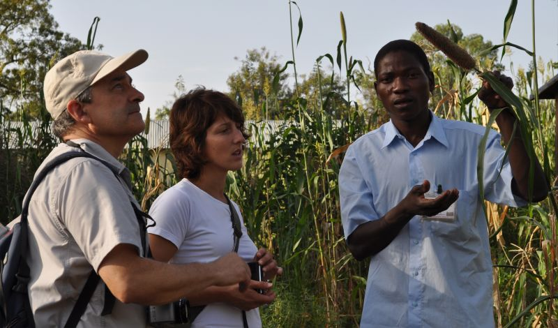 Eco-Benin: Cotonou Discovery Tour: Local Art, History, and Agriculture