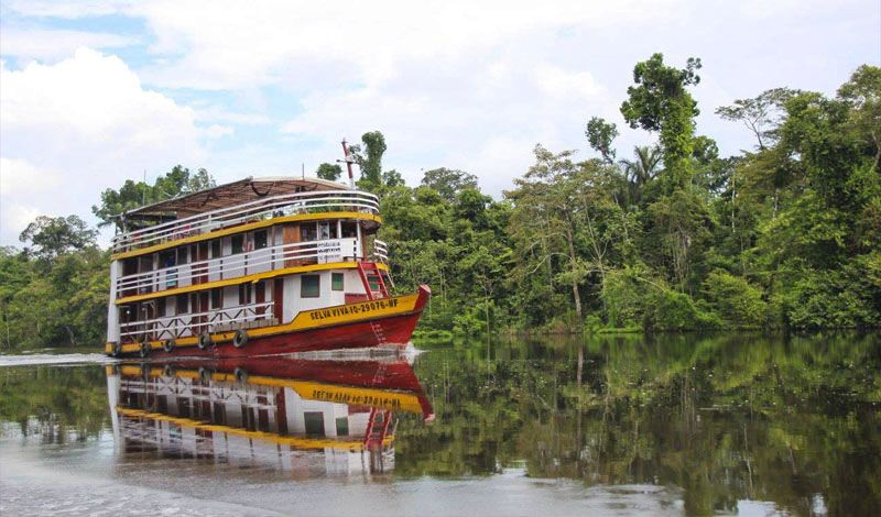 Latitud Sur: Amazon Cruise Tour: Connect with Beautiful Animals and Locals