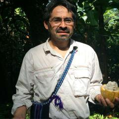 Mexican cacao farmer