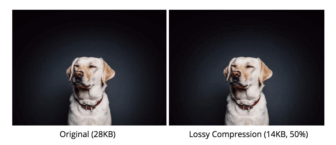 ottimizzare le immagini