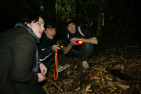 Wildlife Sanctuary Tour by Torchlight - Child
