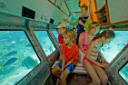 Cruise To Green Island with Submarine and Lunch - Adult