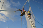 Flying Trapeze - For 1