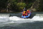 White Water Rafting - King River - Half Day