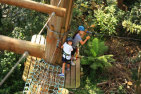 Tree Top Adventure and Zip-Trek For Kids