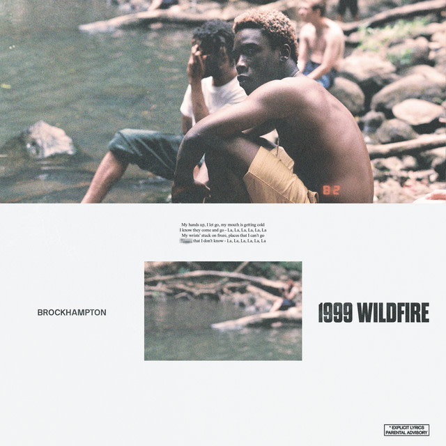 BROCKHAMPTON - 1999 WILDFIRE album artwork