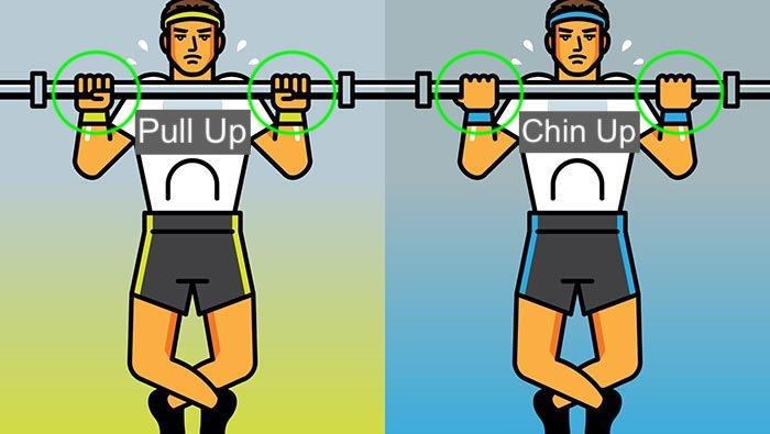 Pull Up vs. Chin up