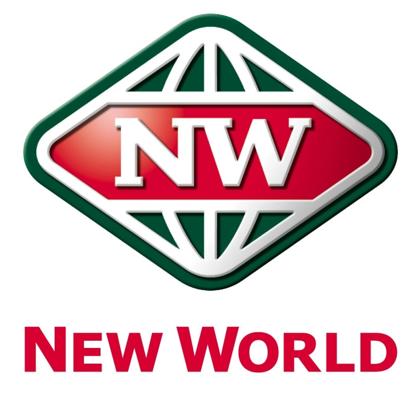 Image result for new world