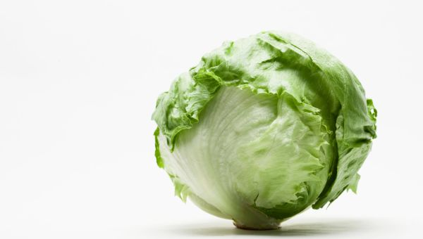 26 Weeks – Baby's Size: Head of Lettuce
