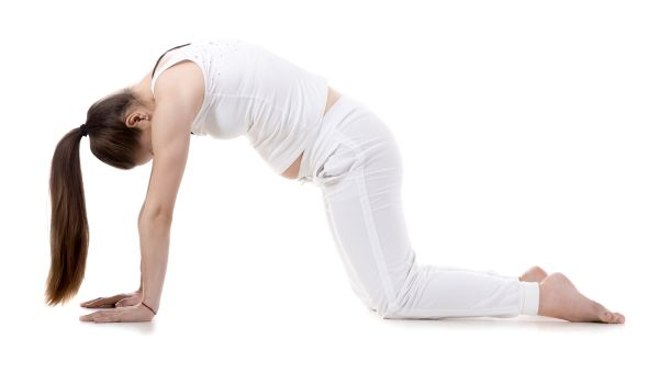 Cat-Cow Pose (Bidalasana)