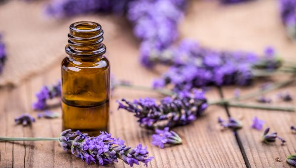 #1: Embrace the lavender herb