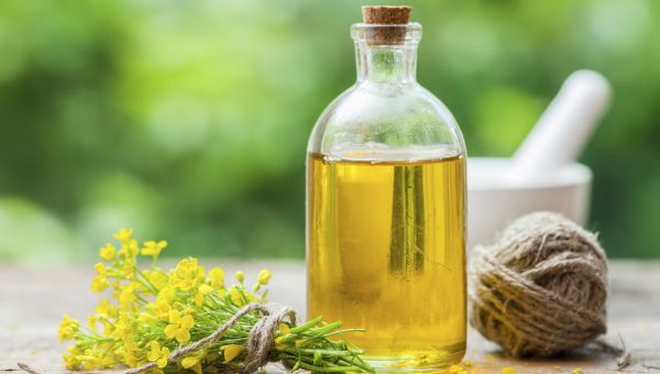 Improve Colon Health with This Oil