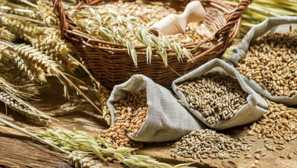 Why You Should Go with Whole Grains