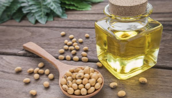 Soybean Oil: GMO or No?