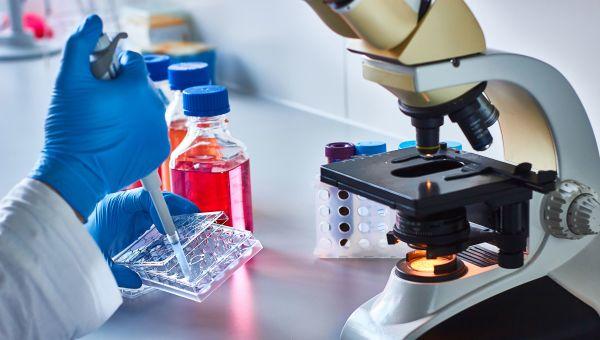 Treatment Options for Chronic Lymphocytic Leukemia
