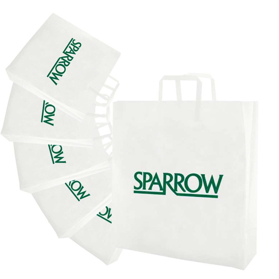 Personalized-Frosted-Tri-fold-Handle-Shopping-Bags