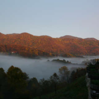 Escape to Wildberry Lodge