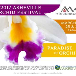 19th Annual Asheville Orchid Festival 'Paradise of Orchids'