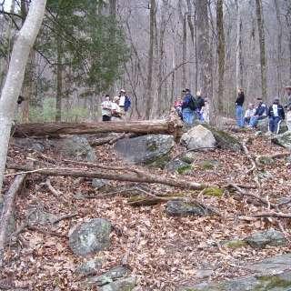 Winter Woodlands Hike
