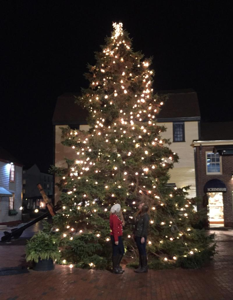Bowen's Wharf Christmas Tree