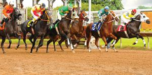 finger-lakes-gaming-and-racetrack-farmington-horses-out-of-the-gate