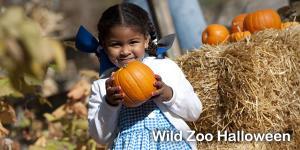 Wild Zoo Halloween