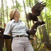 Raptors Ridge Birds of Prey