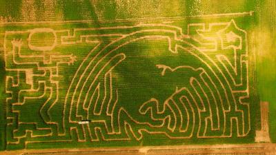 Schwallier's Corn Maze