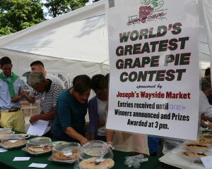 finger-lakes-naples-grape-festival-pie-contest