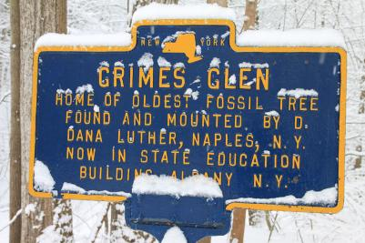 naples-grimes-glen-historic-marker