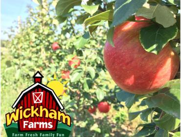 Honeycrisp Weekend