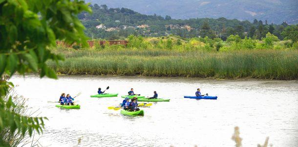 Kayaks on the Napa River