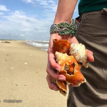 Shelling along Gulf beaches in Lake Charles, Louisiana.