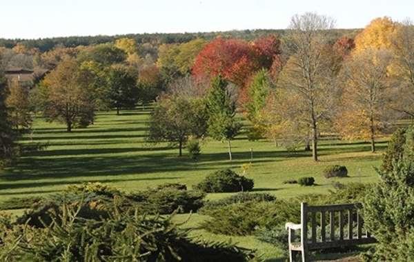 UW-Madison Arboretum Walk: Thinking Like an Arboretum.