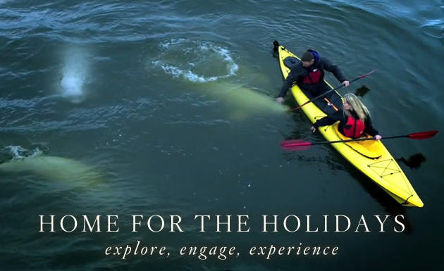 Home for the Holidays kayak with belugas